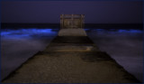 Blue Tide Playa Del Rey
