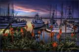 Morro Bay Harbor Sunrise
