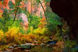 West Fork Autumn