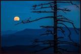 Smokey Mountain Moonrise