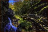 Franconia Notch Flume Gorge State Park