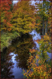 Reflections of Milford Creek