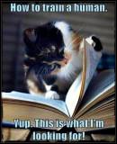 Ahhhh Haaaaa... Found It!!!