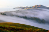 Fog Blankets on the hill