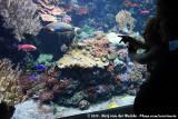 José & Rens at the Aquarium