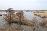 Fukushimagata Lagoon
