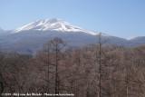 Mount Asama