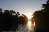 Sunrise with Birds Underwater