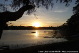 Sunset at Ocala