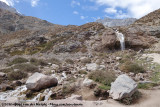 Andean Mountain Stream