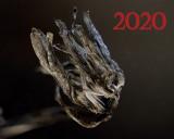 2020-11-25 22-42-53 (B,Radius10,Smoothing4).jpg