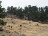 Road trip through Colorado, Utah and Arizona