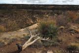 Mesa Verde NP and into AZ