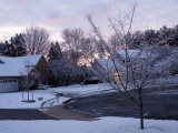 A January Winter Morning in the Neighborhood - 2020