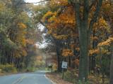 Driving through Catoctin Mountain Park