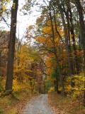 Gravel road into Catoctin Mountain Park