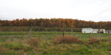 Countryside outside Catoctin Mountain Park