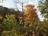 Seneca Park