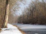 The frozen canal