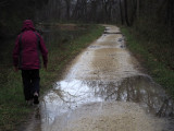 Wet trail