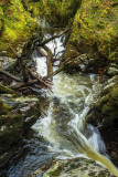 Afon Mynach/River of the Monks
