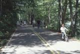 Park patrons using roadway
