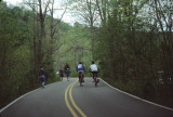 walkers and bike riders at Radnor