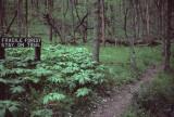 Fragile Forest Trail sign