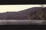 canoes on lake panorama