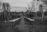 Chernobyl - Alley of Memory and Hope