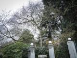 Carl S. English Jr. Botanical Garden
