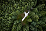 Airplane Home in the Woods