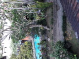 The view from my terrace. Hotel Oka Wati. Ubud