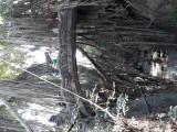 The sacred Monkey Forest. Ubud