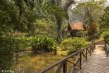 Vakona Forest Lodge, Andasibe  8