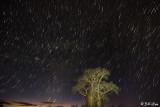 Night Sky, Mandrare Forest Lodge  1