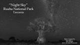 Baobab Milky Way Time Lapse