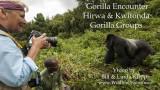 """""""Linda's Mountain Gorilla Encounter"""""""
