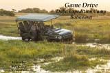Botswana Okavango Delta Game Drive