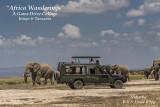 Safari Game Drive video collage