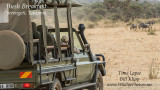 Serengeti Bush Breakfast Time Lapse