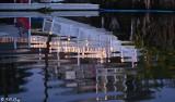 Dock Reflections 1J