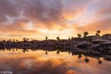 Discovery Bay Sunset  5J
