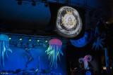 Mystick Krewe Mardi Gras Masquerade Ball    46