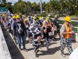 Cow Key Channel Bridge Run  32