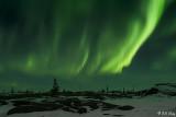 Aurora Borealis  8