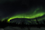 Aurora Borealis  39