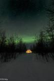 Aurora Borealis  41