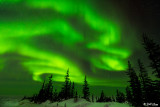 Northern Lights  43