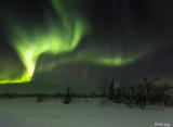 Northern Lights  45